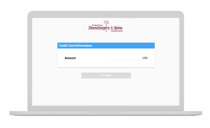 Example of CNSA Online Bill Pay Portal